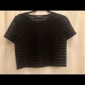 Express black sheer stripe crop top